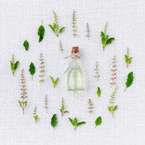 צמחים טבעיים